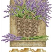 Dimensions 35071 French Lavender